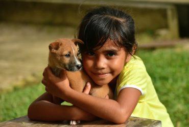 Mascotas e hijos | Tips para una maravillosa convivencia