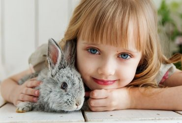 Las Mascotas | Enseña a tu hijo a cuidarla correctamente