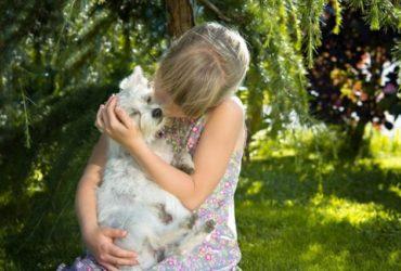 La pérdida de una mascota | Ayuda a tu hijo a superarlo