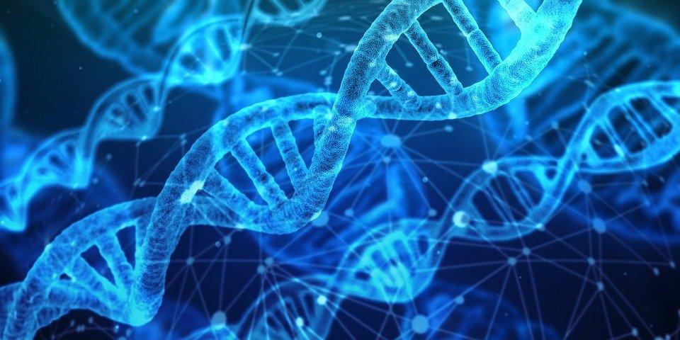Disposición genética - El Carácter - Mamás360.jpeg